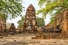 Templo budista velho Wat Mahathat Ayutthaya Historical Park, Ayutthaya Fotografia de Stock