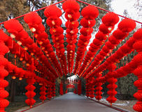 Templo chino del festival del Año Nuevo/resorte justo Imagen de archivo