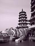 Templo chino: Las pagodas del dragón y del tigre Imagenes de archivo