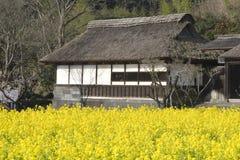 Templo com flores amarelas Fotografia de Stock Royalty Free
