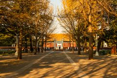 Templo da comunidade no Pequim Fotos de Stock