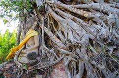Templo de Ayuthaya, Tailândia, Fotos de Stock Royalty Free