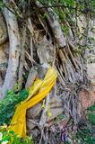 Templo de Ayuthaya, Tailândia, Fotos de Stock