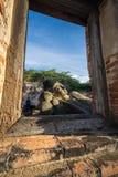 Templo de Ayutthaya, historia de Tailandia Buda imágenes de archivo libres de regalías