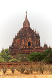 Templo de Bagan Foto de Stock