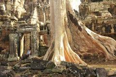 Templo de Banteay Kdei, área de Angkor, Siem Reap, Cambodia imagem de stock