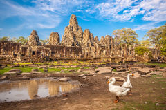 Templo de Bayon, wat de Angkor, Cambodia Foto de Stock