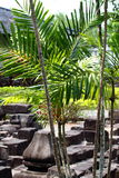 Templo de Borobudur, Yogyakarta, Java, Indonesia Foto de archivo libre de regalías