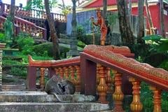 Templo de Buddist en Camboya Foto de archivo