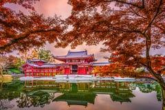 Templo de Byodoin em Kyoto fotos de stock royalty free