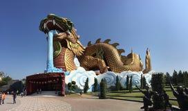 Templo de Chainese em Tailândia Fotografia de Stock Royalty Free