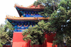 Templo de Confucius, Pequim, China fotos de stock