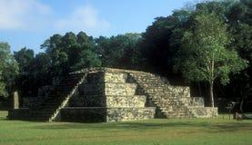 Templo de Copan   Imagen de archivo libre de regalías