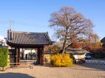 Templo de Gangoji em Nara, Japão Foto de Stock