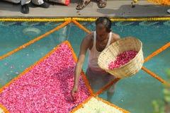 Templo de Iskcon - Deli, Índia foto de stock royalty free