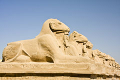 Templo de Karnak Imagem de Stock Royalty Free