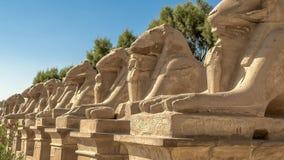 Templo de Karnak metrajes