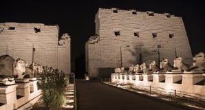 Templo de Karnak en Luxor en la noche Imagen de archivo libre de regalías