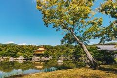 Templo de Kinkakuji o pavilhão dourado em Kyoto, Japão Fotos de Stock Royalty Free