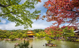 Templo de Kinkakuji (o pavilhão dourado) em Kyoto, Japão Fotos de Stock Royalty Free