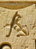 Templo de Kom Ombo, Egito: cinzeladura de um gato pequeno fotografia de stock royalty free