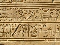Templo de Kom Ombo, Egito: hyeroglyphs egípcios antigos fotos de stock royalty free
