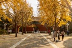 Templo de la comunidad en Pekín Foto de archivo libre de regalías