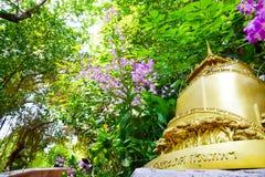 Templo de la montaña de oro 0097 Imagen de archivo libre de regalías