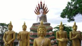 Templo de la visión aérea en Chiangmai, Tailandia metrajes