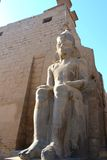 Templo de Luxor Imagem de Stock