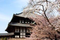 Templo de Nara Todaiji Fotografia de Stock Royalty Free