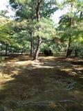 Templo de oro en Kyoto, parque Imagen de archivo libre de regalías