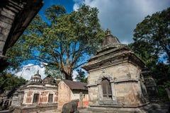 Templo de Pashupatinath, Katmandu, Nepal Fotografía de archivo libre de regalías