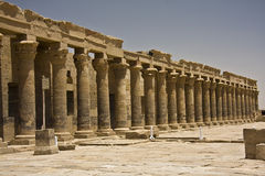 Templo de Philae Imagem de Stock Royalty Free