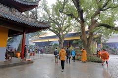 Templo de Pujisi en la lluvia en área escénica de la isla putuoshan, adobe rgb Fotografía de archivo