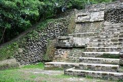 Templo de ruinas maya Imagenes de archivo