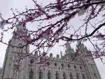 Templo de Salt Lake City, Utá Fotos de Stock
