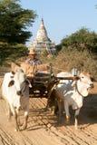 Templo de Shwesandaw no local arqueológico de Bagan Fotografia de Stock