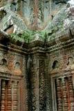 Templo de TA Prohm, Angkor, Camboya Fotos de archivo libres de regalías