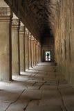 Templo de Ta Prohm em Angkor Wat Fotografia de Stock Royalty Free