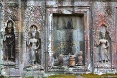 Templo de TA Prohm en Angkor, provincia de Siem Reap, Camboya Fotografía de archivo