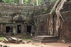 Templo de TA Prohm en Angkor Wat Fotos de archivo libres de regalías