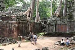 Templo de TA Prohm en Angkor Wat Fotos de archivo