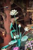 Templo de Todaiji da flor de Lotus em Nara fotografia de stock