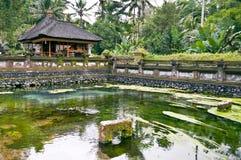 Templo de Ubud Fotografia de Stock Royalty Free