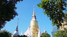 Templo de Wat Suan Dok Famous em Chiang Mai Thailand com artes do ângulo video estoque