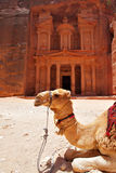 Templo del Hacienda en el Petra Foto de archivo