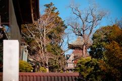 Templo del ji de Narita san Shinsho, Narita, Chiba, Japón imagen de archivo libre de regalías