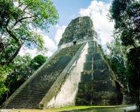 Templo del maya en el parque nacional de Tikal en Guatemala Imagen de archivo libre de regalías