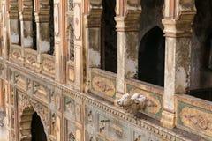 Templo del mono fuera de Jaipur Galta Ji Imagenes de archivo